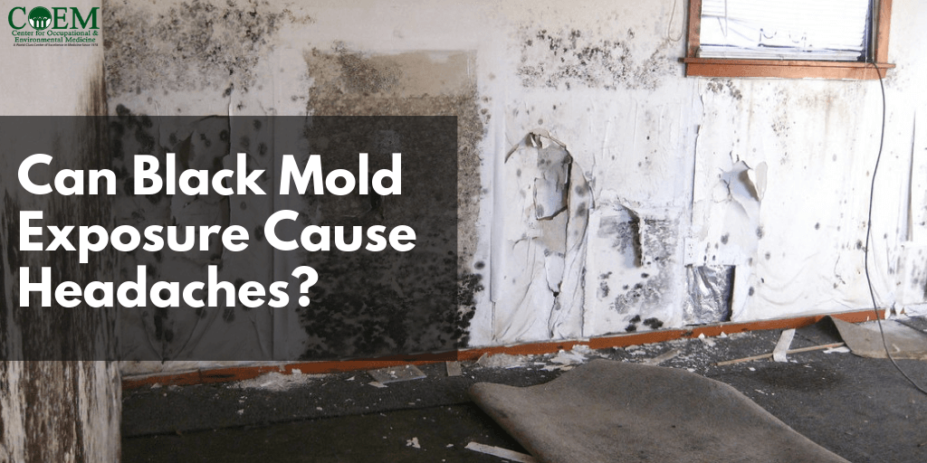 black mold exposure and headache
