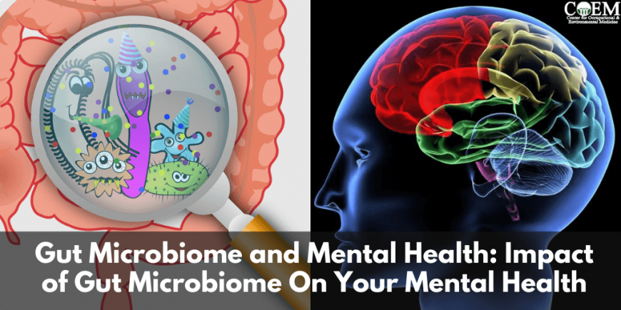 Gut Microbiome and Mental Health
