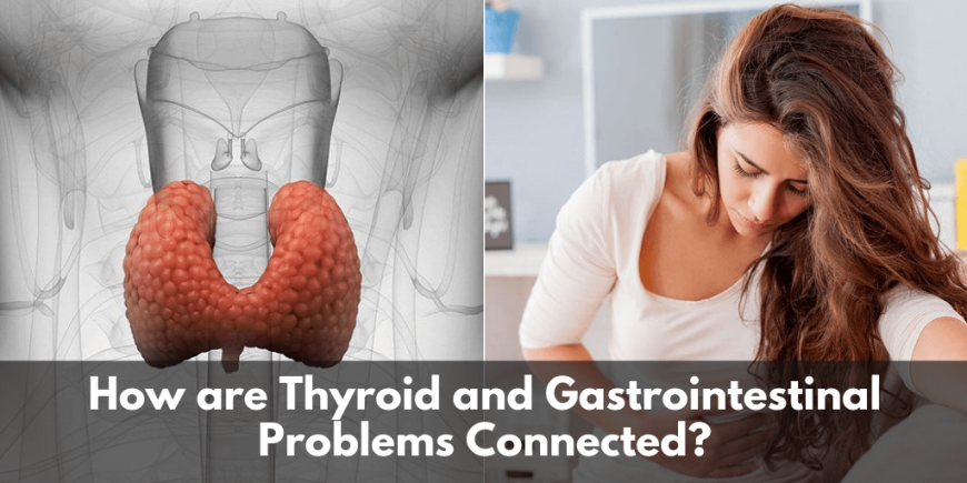 Thyroid And Gastrointestinal Problems