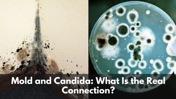 Mold and Candida