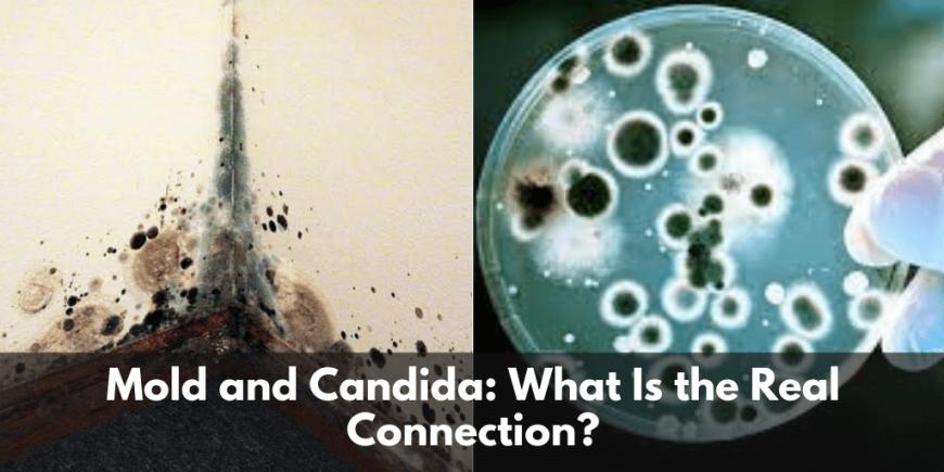 Mold and Candida
