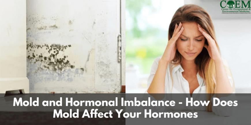 Mold and Hormonal Imbalance